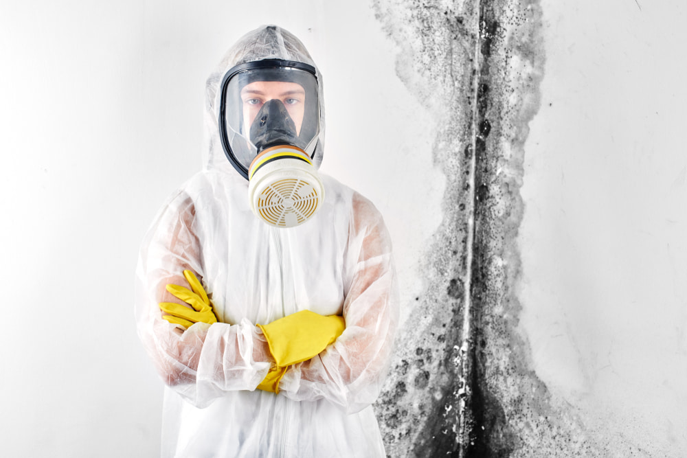 What does a mold remediation specialist do