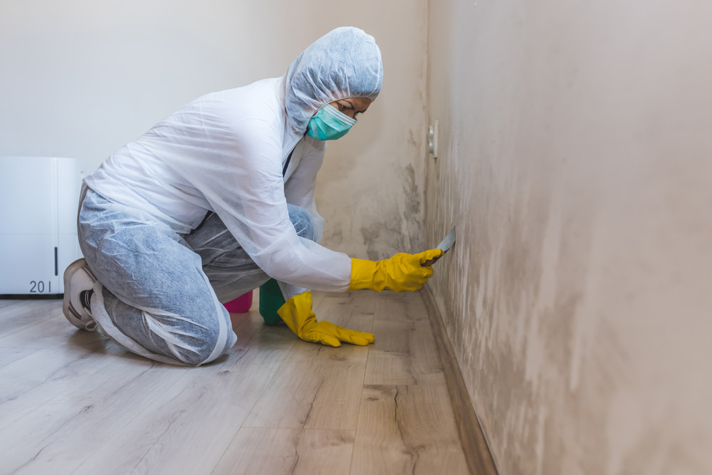 Can you stay in your house during mold removal